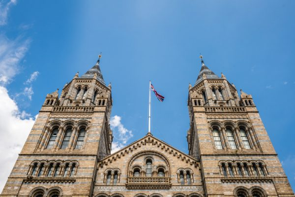 Towers of the Natural History Museum